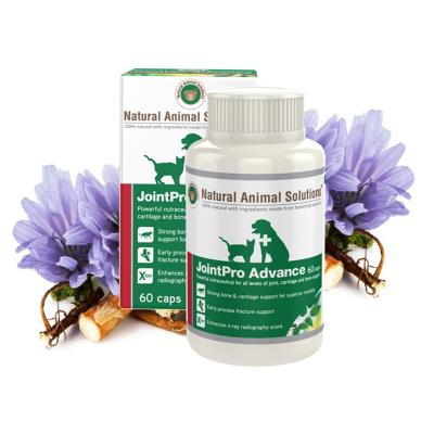 Natural Animal Solutions Joint Pro Advance For Dogs And Cats 60 Caps