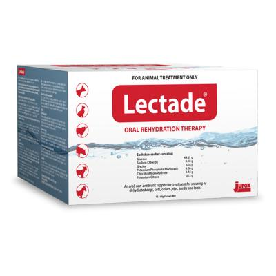 Lectade Oral Rehydration Therapy Sachets For Dogs Cats Horses And Livestock 64gm x 12