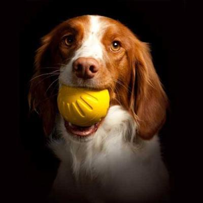 Starmark Fantastic DuraFoam Ball Medium For Dogs