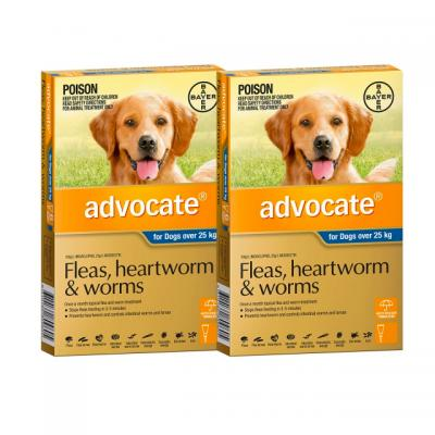 Advocate For Dogs XLarge Over 25kg 12 Pack