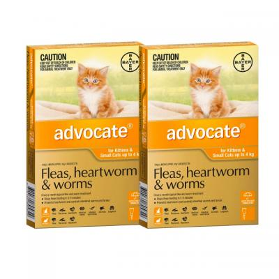 Advocate For Cats And Kittens Small Up To 4kg 12 pack