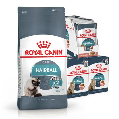 Royal Canin Bundle Hairball Care Adult Wet And Dry Cat Food