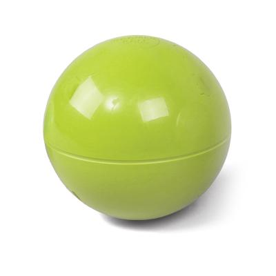 Kazoo Roll A Ball  Medium Toy For Dogs