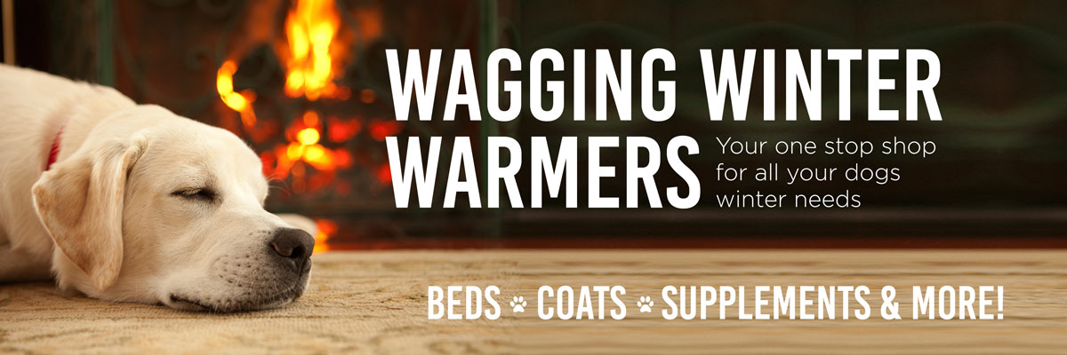 Wagging Winter Warmers May 2017