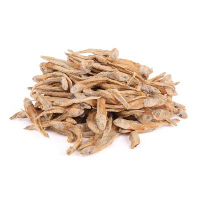 Kazoo Dried Fish Treats For Cats 100gm
