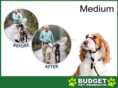 Purina Petlife Halti OptiFit Medium Head Collar With Training DVD For Dogs