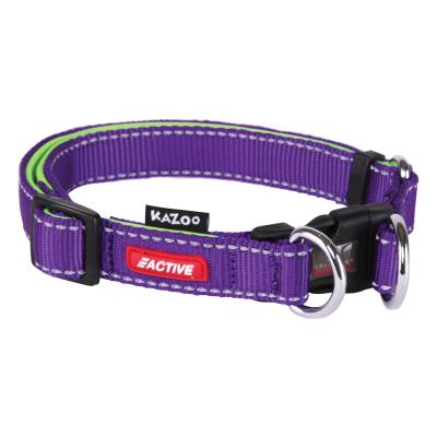 Kazoo Active Adjustable Nylon Reflective Collar Purple Lime Large 37-55cm x 20mm For Dogs