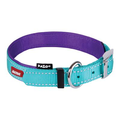 Kazoo Active Nylon Reflective Collar Aqua Purple Small 26-33cm x 12mm For Dogs