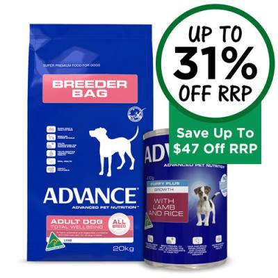 Budget Pet Products Discount Dog Products Pets Pet Shops