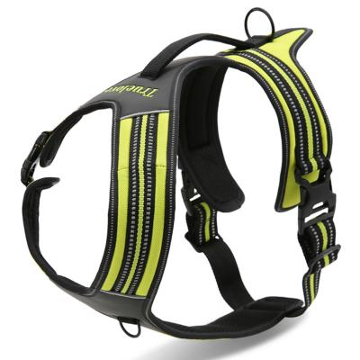 True Love Dog Harness Nylon Reflective Padded Green Medium For Dogs