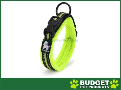 True Love Nylon Reflective Padded Collar Green XSmall For Dogs