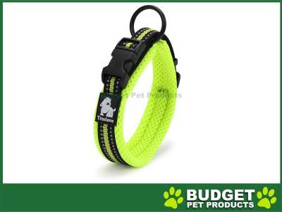 True Love Nylon Reflective Padded Collar Green XXLarge For Dogs
