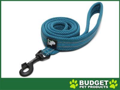 True Love Nylon Reflective Padded Lead Blue Medium 1m For Dogs