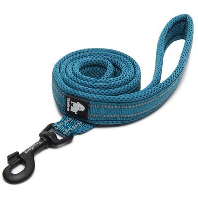 True Love Nylon Reflective Padded Lead Blue Medium 2m For Dogs
