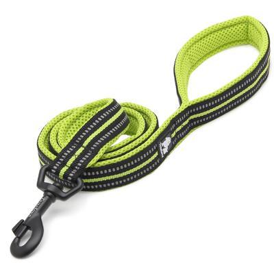 True Love Nylon Reflective Padded Lead Green Medium 1m For Dogs