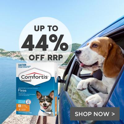 Discount Dog Collars Australia