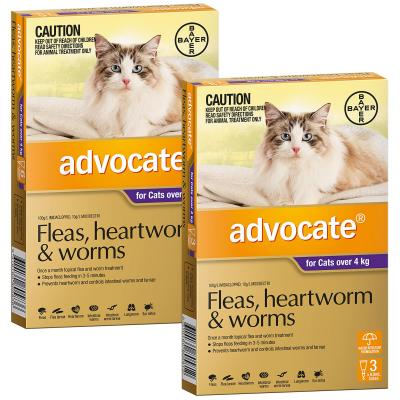 Advocate For Cats Large Over 4kg 9 Pack