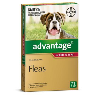 Advantage For Dogs 10-25Kg Single Dose