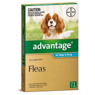 Advantage For Dogs 4-10Kg Single Dose