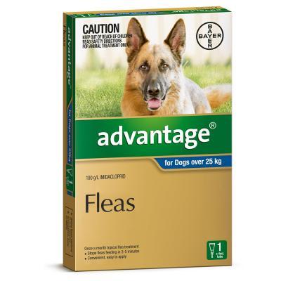 Advantage For Dogs Over 25Kg Single Dose