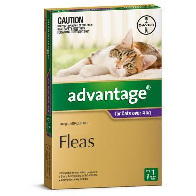 Advantage For Cats Over 4Kg Single Dose