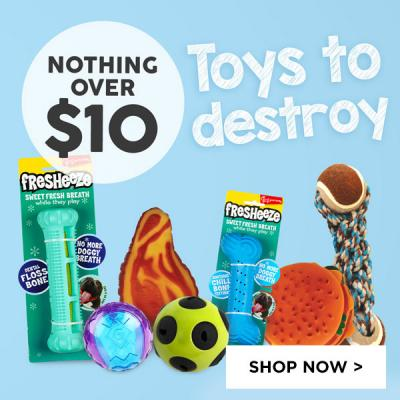 Toys to destroy - Nothing over $10