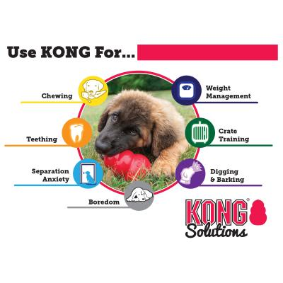 KONG Classic Small Red Rubber Toy For Dogs