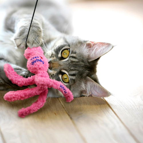Wubba Cat