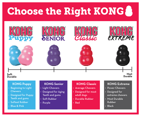 Choose The Right KONG