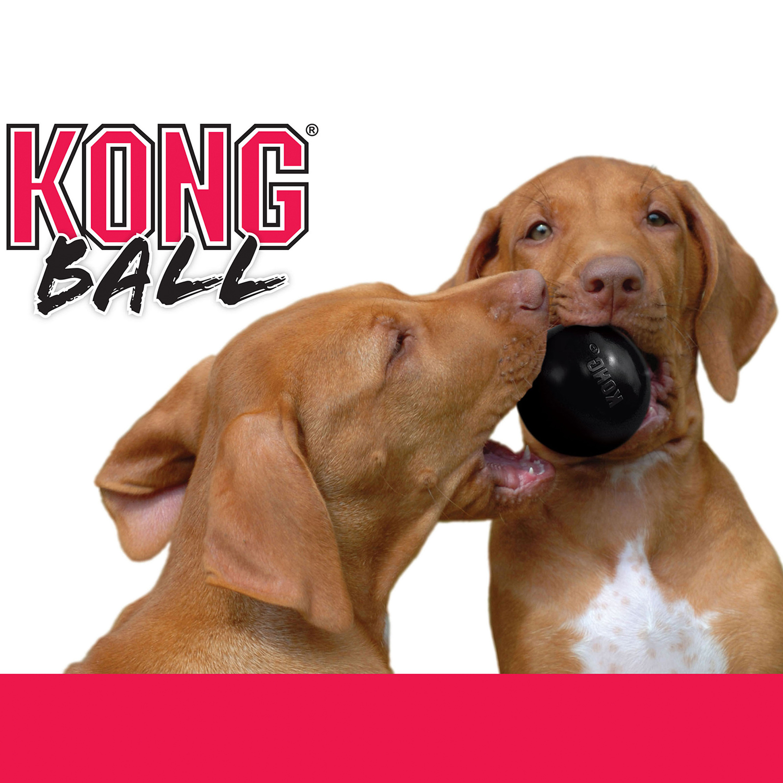 Kong Extreme Black Ball Medium Large Toy For Dogs 17 51