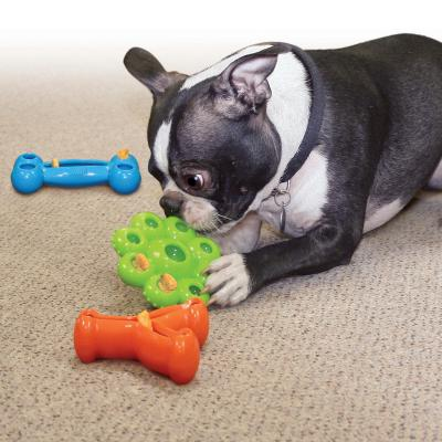 KONG Quest Bone Large Toy For Dogs