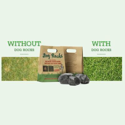 Dog Rocks - No More Urine Burn On Your Lawn 600gm X 4