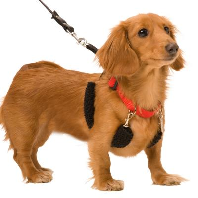 Sporn Training Halter Black For Small Dogs