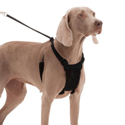 Sporn Stop Pulling Mesh Harness Black For Large/Extra Large Dogs