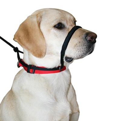 Sporn Head Control Halter Black For Large Dogs