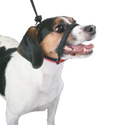 Sporn Head Control Halter Black For Medium Dogs
