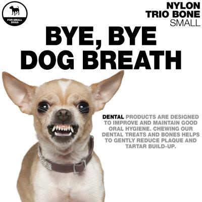 Tasty Bone Peppermint Nylon Trio Dental Toy Small For Adult Dogs