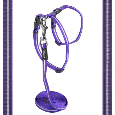 Rogz Alleycat Harness And Lead Set Purple 11mm Width For Medium And Large Cats
