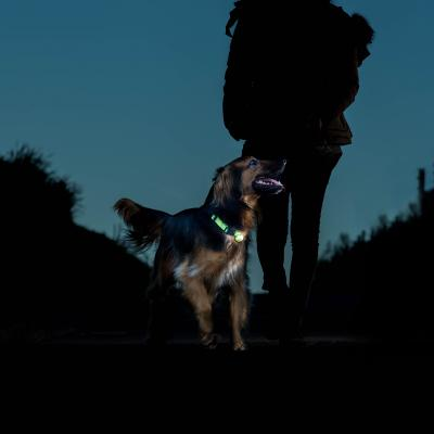 Rogz Roglite Pink Safety Light For Dogs Collars And Leads