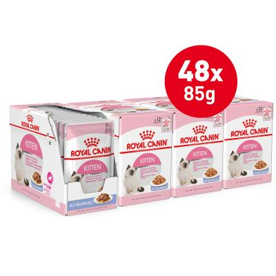 Royal Canin Instinctive in Jelly Kitten Pouches Wet Cat Food 85g x 48