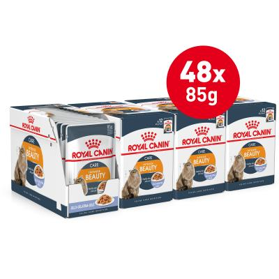 Royal Canin Intense Beauty in Jelly Adult Pouches Wet Cat Food 85g x 48