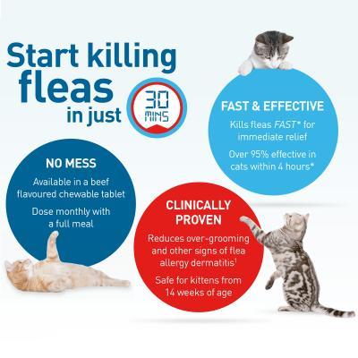 Comfortis For Cats 2.8-5.4kg Orange 3 Tablets