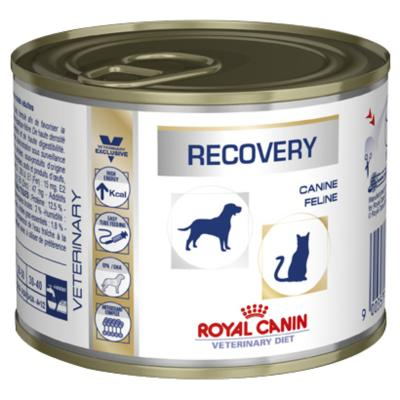 Royal Canin Veterinary Diet Canine Feline Recovery Cans For Dogs And Cats 195gm x 12 (RK459)