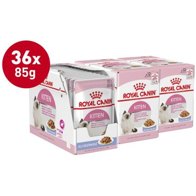 Royal Canin Instinctive in Jelly Kitten Pouches Wet Cat Food 85g x 36