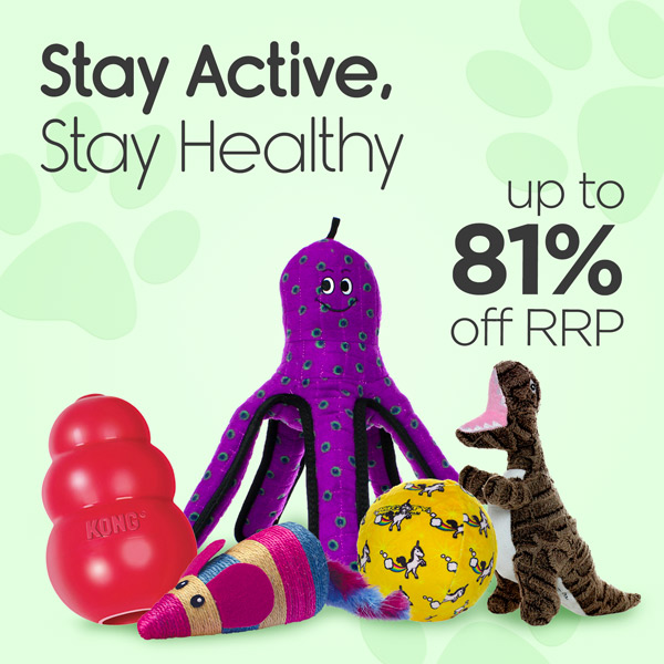 Stay Active, Stay Healthy - Up To 81% Off RRP On Toys