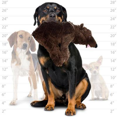 Mighty Nature Bear Soft Toy For Dogs