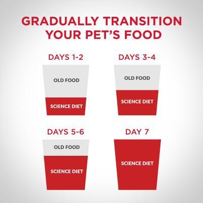 Hills Science Diet Advanced Fitness Adult Dry Dog Food 12kg 10313HG