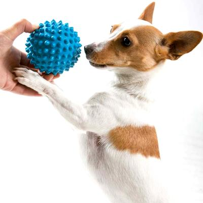 Aussie Dog Catch Ball Soft Blue Tough Toy For Dogs