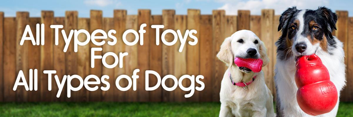 Dog Toys Banner