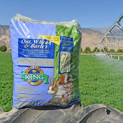 Alfalfa King Oat Wheat & Barley Hay For Small Animals 454gm